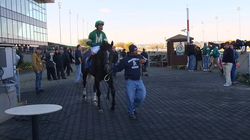 Son Of Holy Bull--Cruises Creek In Winner's Circle After Race 3 Victory