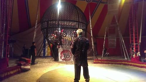 Circus courtesy of MAC FB