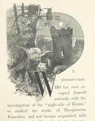 Image taken from page 13 of 'Among the Gnomes. An occult tale of adventure in the Untersberg, etc'