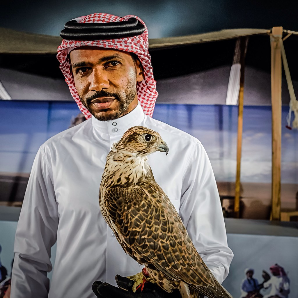 Portrait of a Falcon Man