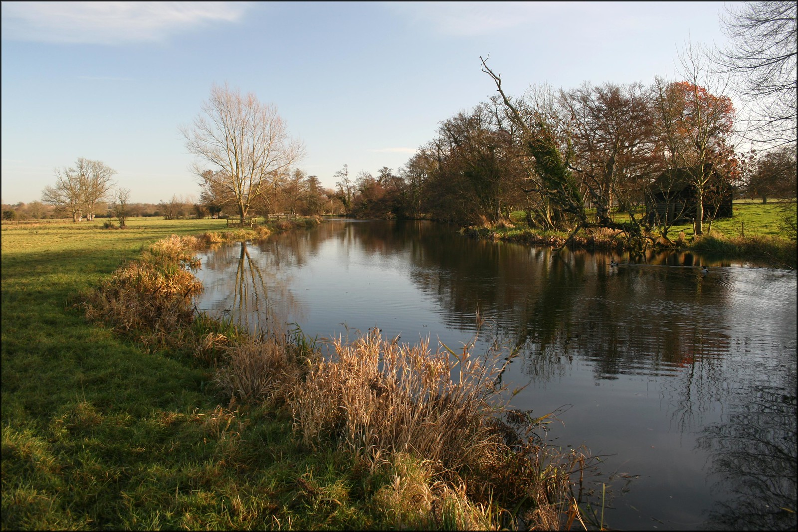 The River Stour near Stratford St Mary
