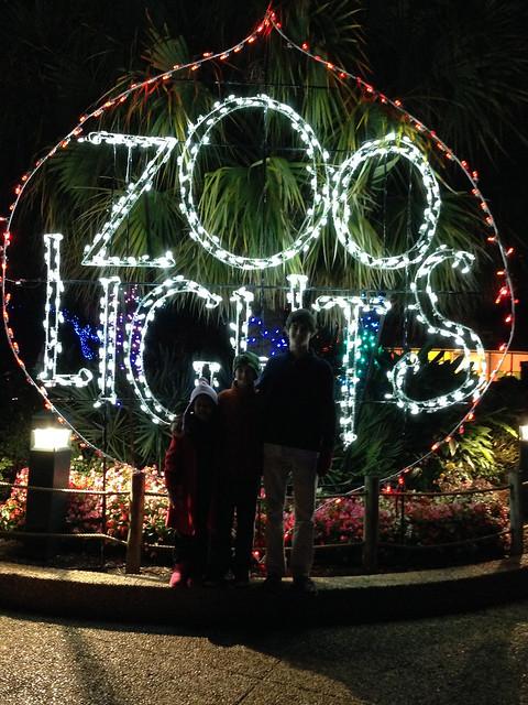 zoolights_3481