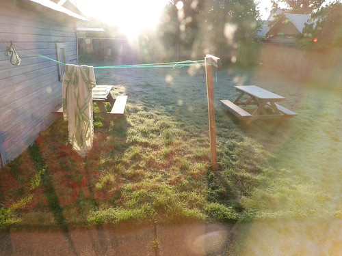Backyard, Frosty Morning