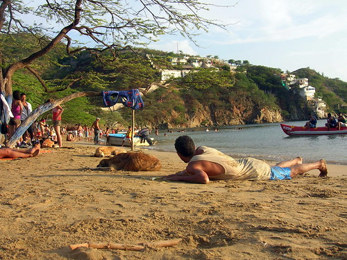 people and stray dogs on the beach in Taganga