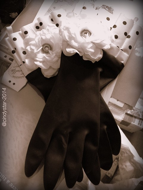 fashion kitchen gloves