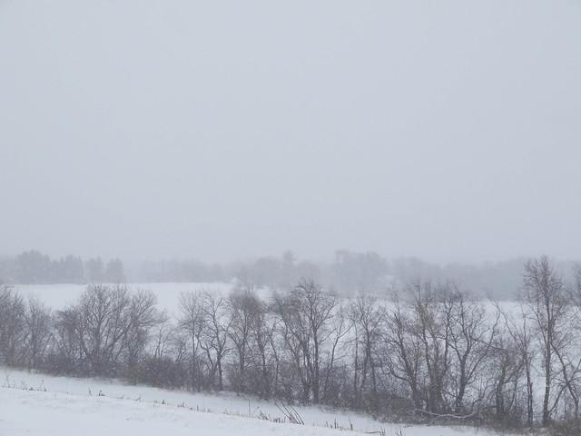 farmette winter-10.jpg