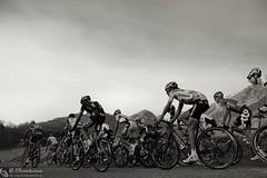 Ciclismo: Tirreno Adriatico 2014