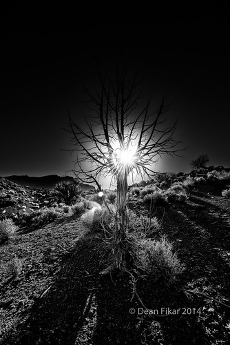 morning light sunset blackandwhite sun sunlight white mountain black mountains tree nature monochrome silhouette mystery contrast sunrise dark landscape dawn utah shadows unitedstates desert flare moab glowing rays stillness sagebrush onioncreekroad