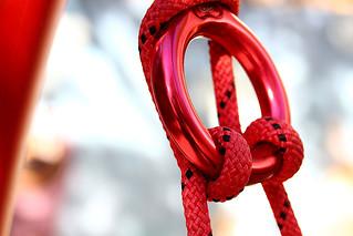Flickr Friday - Knot