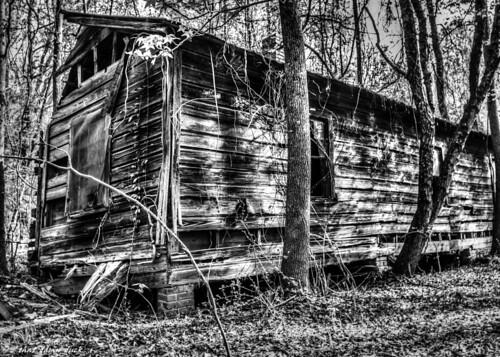 blackandwhite monochrome building abandoned urbex urbanexplorer decaying architecture trees woods bw blackwhite