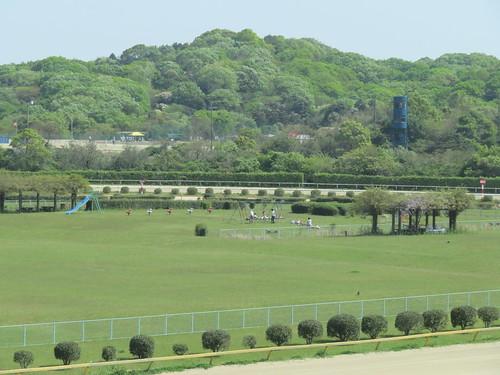 佐賀競馬場の内馬場の様子