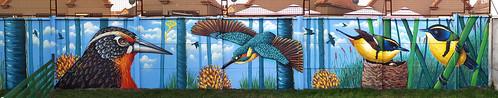 ren ren1 ren1cl graffiti mural encargo chillán streetart humedal aves