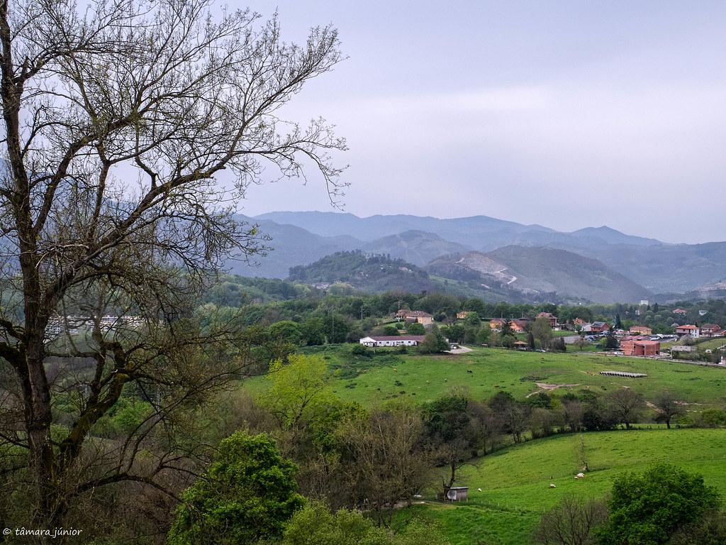 40.- Camino del Salvador-8ª etapa (359)