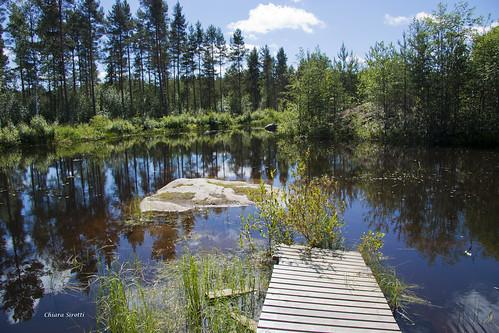 wood blue sky cloud lake reflection tree nature water rock forest suomi finland pond vaasa vasa eos450d 172365day öjberget edition3652013day 365the2013 17221jun13chiara sirotticanoneos450dcanon