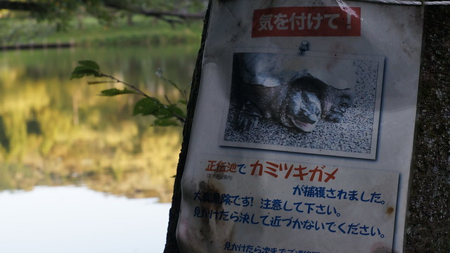 Jyoukouji_park_11