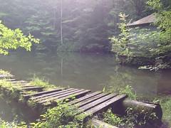 monk's pond - sunken dock