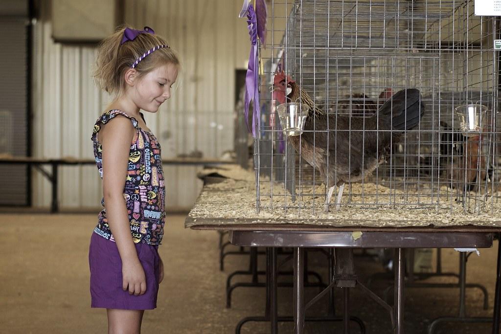 Purple Ribbon Chicken