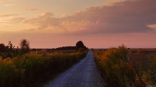 road sunset summer sky nature clouds landscape colours path poland polska natura droga przyroda moskwa kolory chmury niebo lato zachódsłońca krajobraz ścieżka parkkrajobrazowywzniesieńłódzkich lodzhillslandscapepark