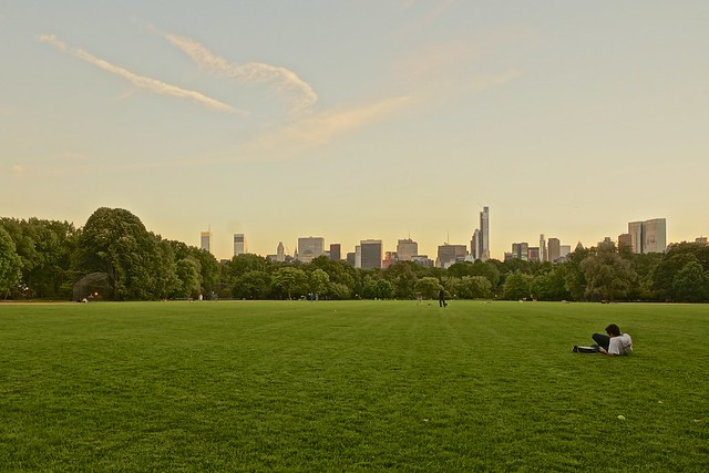 Central Park/Great Lawn, Sep 2013 - 05