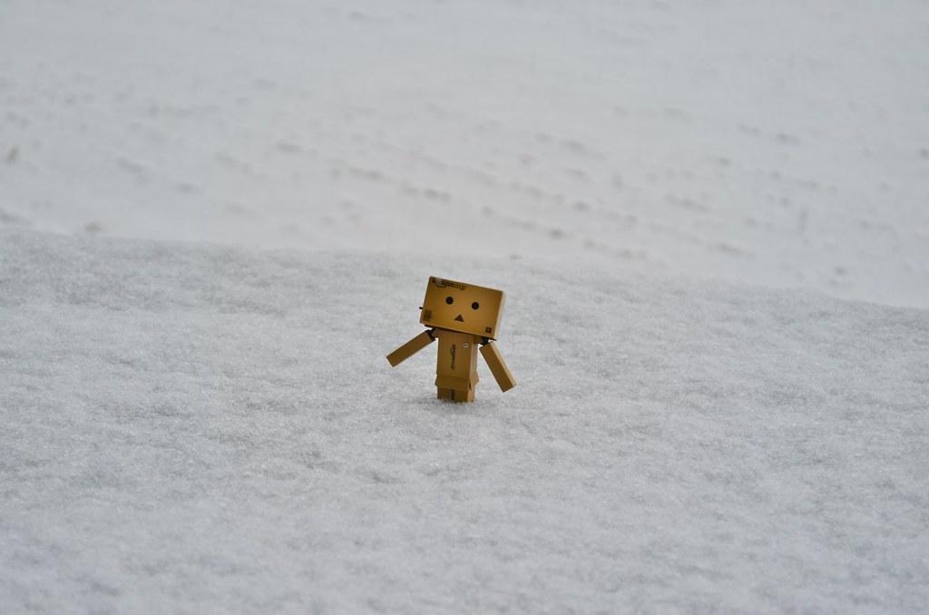 2013年初雪&初積雪 (2)
