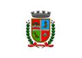 Bandeira da cidade de Santa Cruz do Sul