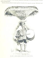 """British Library digitised image from page 611 of """"Bolivia. Sept années d'explorations, de voyages et de séjours dans l'Amérique Australe ... Préface de M. Ferdinand de Lesseps. Ouvrage illustré ... par Henri Lanos"""""""
