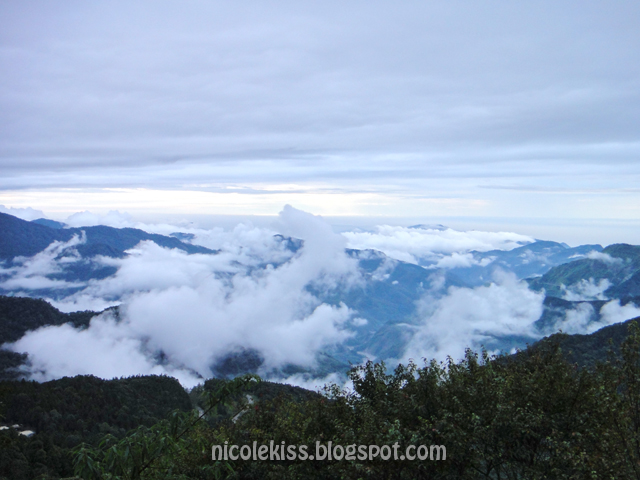 Sea of clouds on the way up to Alishan