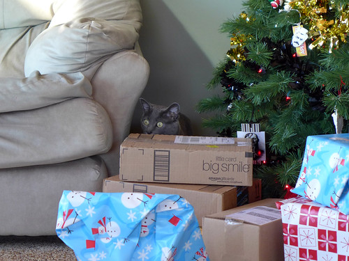 2013-12-25 - Opening Presents - 0203 [flickr]