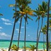 Playa Bavaro by Pablo_G70