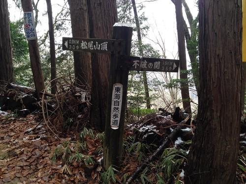 松尾山 山頂分岐