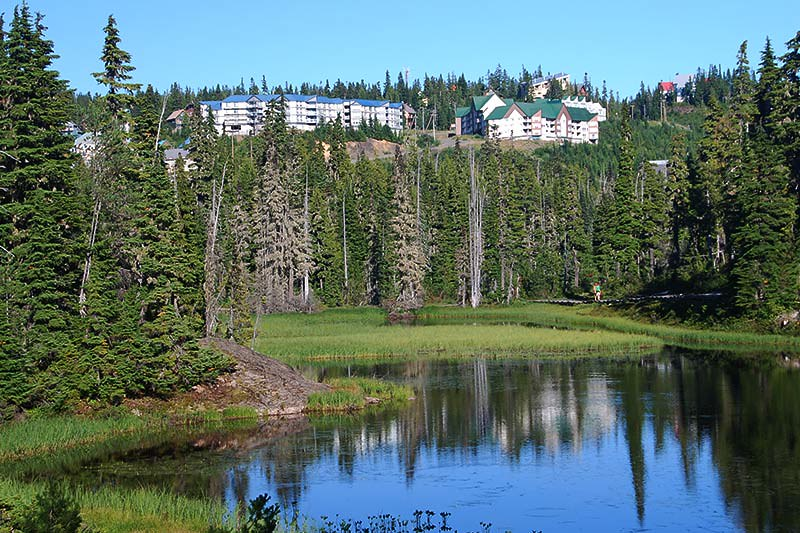 Mount Washington Alpine Ski Resort Accommodation, Vancouver Island, British Columbia