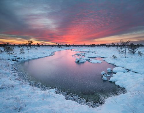 sky snow ice sunrise landscape countryside baltic latvia swamp latvija ziema rucava purvs ainava liepajasrajons dunika saullekts