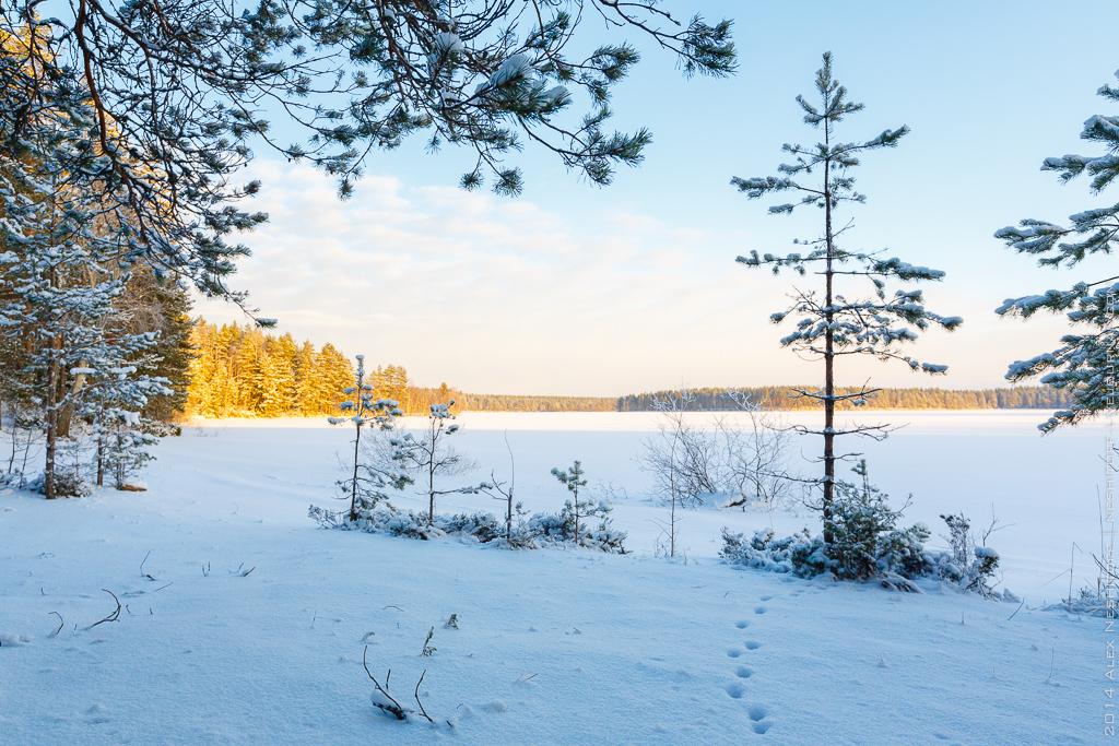 2014-Russia-Karelia-Onemyday2-011
