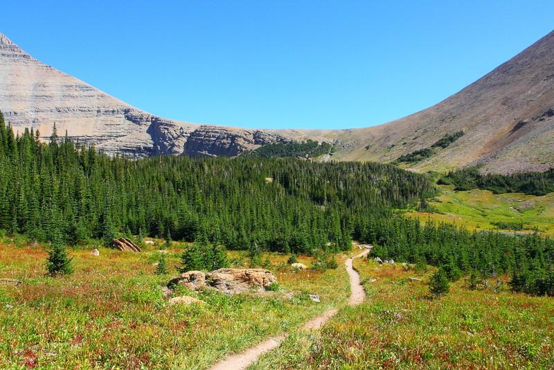 IMG_3905 Siyeh Pass Trail, Glacier National Park