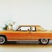 1977 Lincoln Continental Town Coupe by aldenjewell