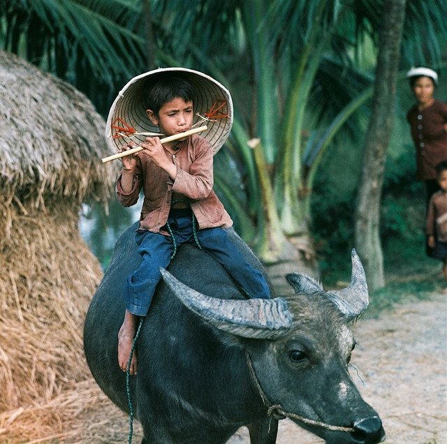 North Vietnam 1969 - Photo by Thomas Billhardt