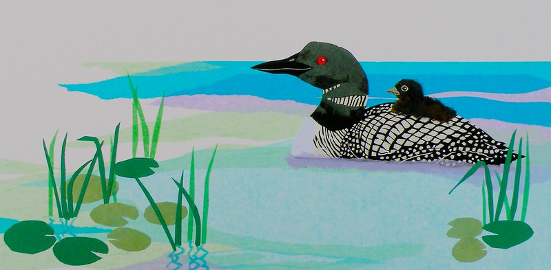Loon & Chick