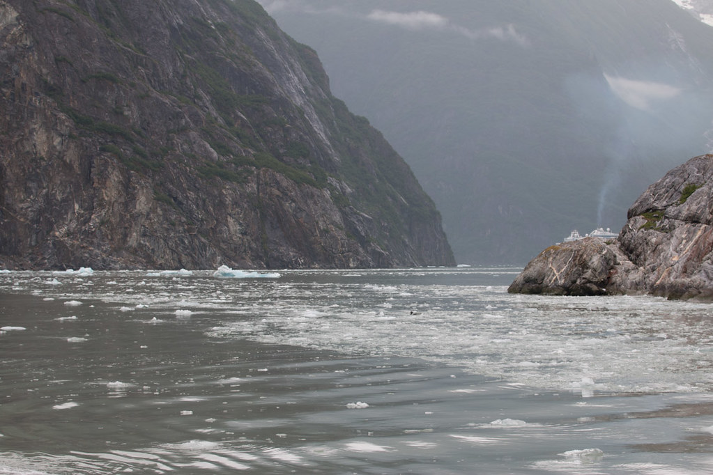 Sailing on Tracy Arm Fjord