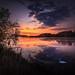 Swan Lake by Goddl
