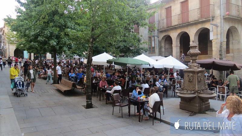 Pontevedra España (20)