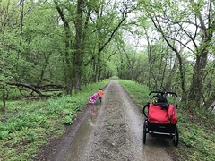 We stop along the C&O Trail after a rain storm for the twins to play