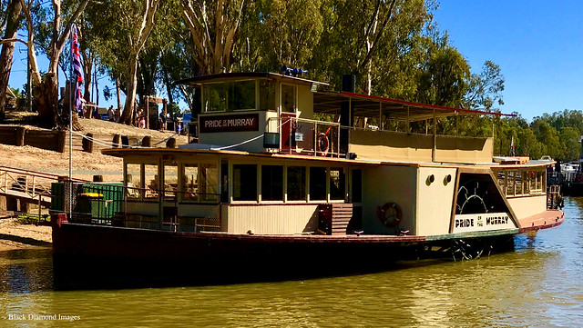 Paddle wheeler 'Pride of the Murray' - Echuca, Victoria