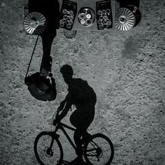 Shadows at Leith Hill