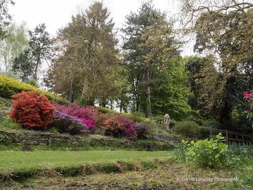 Linda Vista Gardens Abergavenny 2017 04 27 #8 (Gareth Lovering Photography 3,000,594 views.)