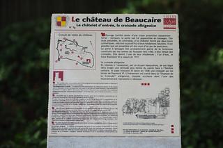 Imagen de Château de Beaucaire. pentax raptors k20 rapaces k20d