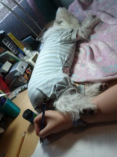 Petal making sure she's connected to me while i worked. I drew with her paw on me. :) She's sweet.
