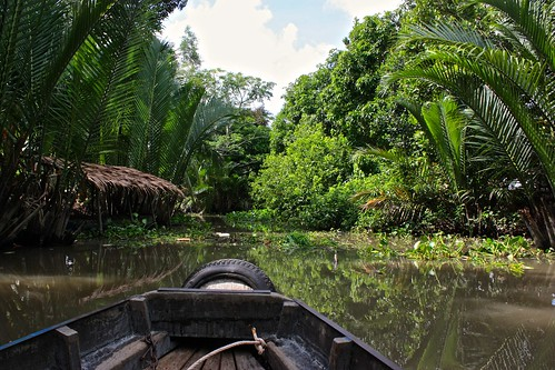 getting into smaller canals, more jungle