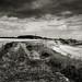 Happisburgh Coastline, Norfolk. by Paul Greeves