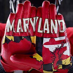 Maryland Gloves