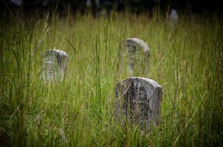 Transit Road Cemetery-007